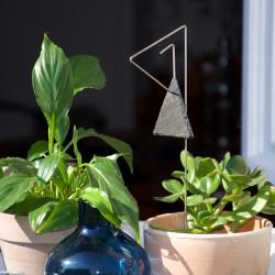 Porte-étiquette Pablo avec étiquette ardoise triangle sur plante d'intérieur