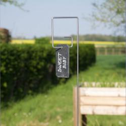 Tuteur métallique de jardin PIET inox 6 avec étiquette ardoise Léon sur tomates cerises