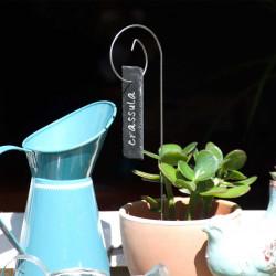Porte-étiquette Gustav avec étiquette ardoise languette sur plante d'intérieur