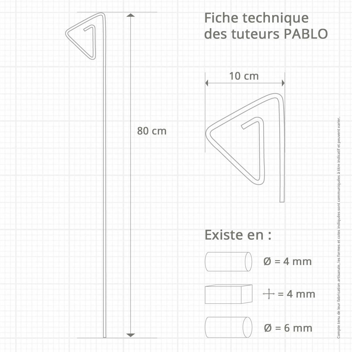 Le Jardin de Léon - Prototype de tuteur métallique - Modèle PABLO