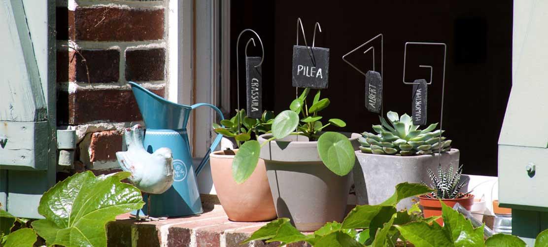 Porte-étiquettes et étiquettes ardoise sur le rebord de la fenêtre- Le jardin de Léon